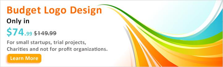 Budget Logo Design
